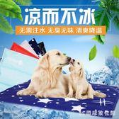 狗狗冰墊寵物狗墊子坐墊金毛泰迪狗狗涼席耐咬凝膠冰墊夏季通用 LH1726【3C環球數位館】