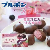 日本 Bourbon 北日本 莓果巧克力法式棉花糖 41g 莓果巧克力 甜點 巧克力 法式巧克力 日本巧克力