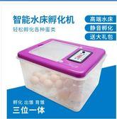 店長推薦中信孵化機全自動家用型小雞小型鳥蛋孵化器水床孵蛋器鴿子孵化箱