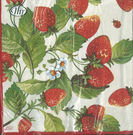 新貨到!草莓園-德國 IHR 餐巾紙(33x33cm)