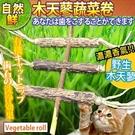 【培菓平價寵物網】自然鮮系列》木天蓼蔬菜...