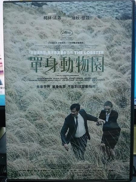 挖寶二手片-P02-077-正版DVD-電影【單身動物園】柯林法洛 瑞秋懷茲(直購價)