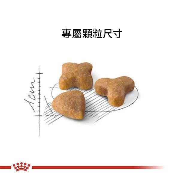 *WANG*法國皇家S33腸胃敏感成貓10公斤