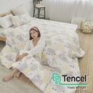 [小日常寢居]#HT034#絲柔親膚奧地利TENCEL天絲3.5尺單人床包被套三件組(含枕套)台灣製/萊賽爾Lyocell