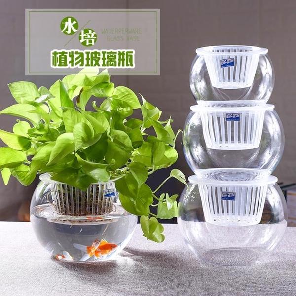 現貨 水培植物玻璃瓶水培花盆玻璃圓球水養【倪醬小舖】