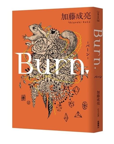 (二手書)Burn.