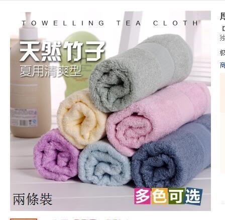 五星級飯店特價純棉毛巾加大加厚成人洗臉全棉吸水巾素色(兩條裝)