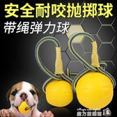 狗狗玩具球馬犬金毛大型犬耐咬浮水訓犬球訓狗玩具帶繩球寵物用品 魔方數碼館