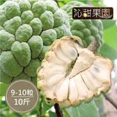沁甜果園SSN.台東大目釋迦(9-10顆裝/10台斤)﹍愛食網