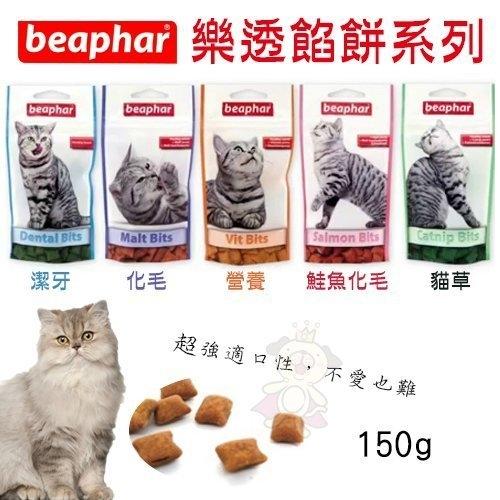 *WANG*荷蘭beaphar樂透餡餅系列150g 貓草潔牙 營養化毛鮭魚口味.貓餅乾