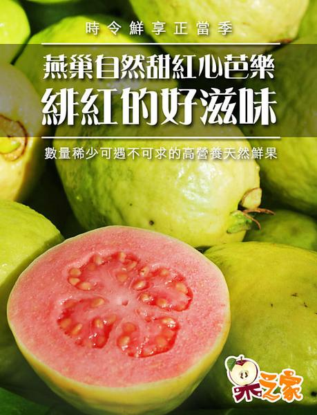 果之家 每日C家庭水果箱(紅心芭樂+葡萄柚+檸檬)