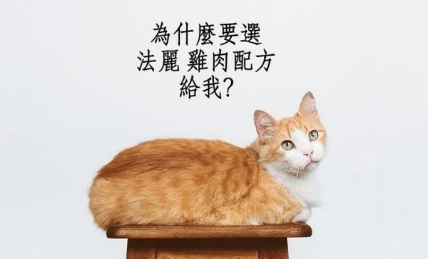 【24罐】*WANG*法麗Cherie 微湯汁系列80G貓罐 天然100%天然多汁雞‧低過敏源