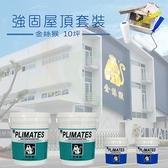 【漆寶】《10坪屋頂防水》金絲猴強固套裝 ★免運費★