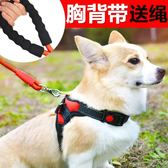 泰迪柯基寵物用品中小型犬狗狗牽引繩幼犬胸背帶遛狗繩子狗錬項圈『小淇嚴選』