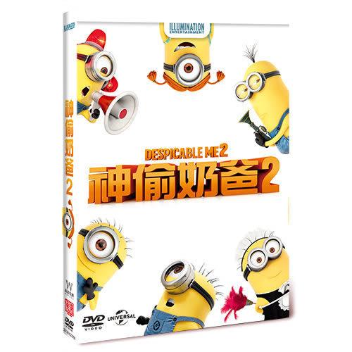 神偷奶爸 第二集 DVD  神偷奶爸2  (購潮8)