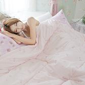 小粉紅羊毛被 英國小羊毛被(6尺*7尺, 雙人)超保暖100% 台灣製