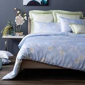 HOLA 滄藍天絲床包兩用被組 雙人
