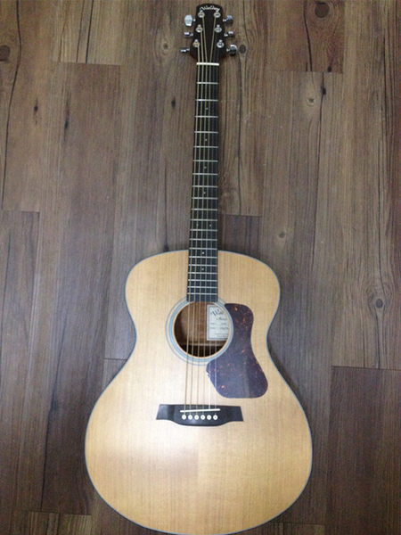 【金聲樂器廣場】全新 Walden G-570CE 面單板 民謠吉他 電木吉他 EQ