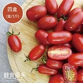 【花田無花果】有機轉型玉女小蕃茄4盒(盒/1斤)
