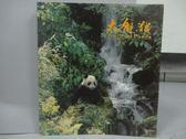 【書寶二手書T9/攝影_ZDE】大熊貓