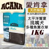 [寵樂子]《愛肯拿ACANA》太平洋響宴 / 挑嘴犬無穀配方 - 多種魚薰衣草 1kg / 狗飼料