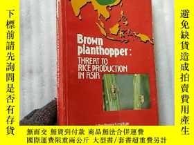 二手書博民逛書店Brown罕見planthopper:THREAT TO RIC