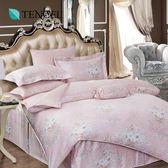 天絲 Tencel 特雷莎 床包 加大三件組 100%雙面純天絲