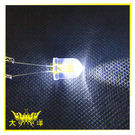 ◤大洋國際電子◢ 10mm透明殼 白光 高亮度LED (250PCS/包) 0629-W LED 二極管