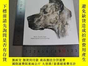 二手書博民逛書店【百罕見】1895年平版畫《mentor deutsche dogge》(德國狗導師) 尺寸見圖( 603073)