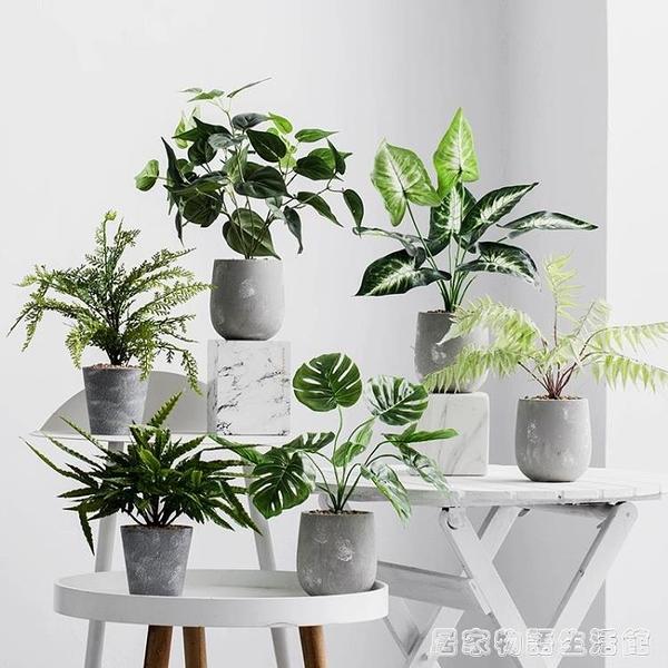 北歐綠植仿真龜背葉假花裝飾小盆栽假盆景植物客廳辦公室桌面擺件 居家物語