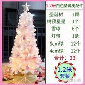 1.2米白色聖誕樹套餐圣誕節裝飾品婚禮場景豪華加密套裝 DJ1190『易購3c館』