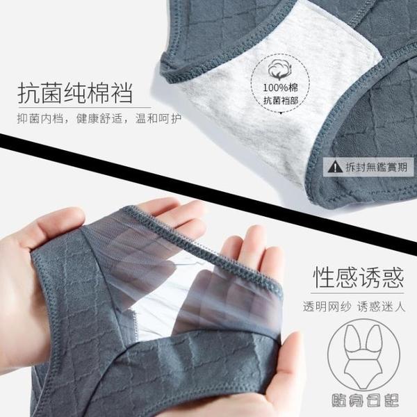 3條|內褲女純棉抗菌性感透氣舒適系低腰三角透明性惑短褲頭【貼身日記】