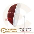 ◎相機專家◎ Godox 神牛 DPU-85T 透明柔光罩 85cm 柔光布 適用 UB-85S UB-85W 公司貨