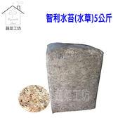智利水苔(水草)5公斤±10%裝