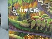 【書寶二手書T1/兒童文學_YIP】石頭毛蟲_張晉霖、李美華