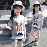女童短袖T恤夏裝卡通純棉上衣兒童圓領半袖條紋體恤衫 概念3C旗艦店