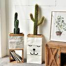 ins北歐風 雙層加厚款 牛皮紙袋 乾燥花 盆栽 裝飾 居家雜物 收納袋 拍攝道具 森林系