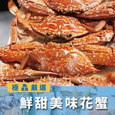 斯里蘭卡花蟹 (1公斤±5%,約5-6隻)