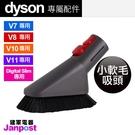 Dyson 戴森 V11 V10 V8 ...