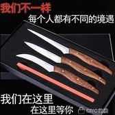 食品雕刻刀廚師雕花主刀瓜水果蔬雕刻刀套裝入門花樣專用雕刻套裝 ciyo黛雅