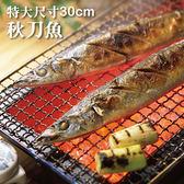 ~特大秋刀魚~4 隻裝~ 料理代表性食材~陸霸王~
