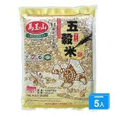 馬玉山五穀米1.5KGX5【愛買】