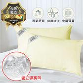 Arnold Palme 排汗彈力枕【SY001】獨立筒式彈簧 透氣舒適枕頭 舒壓枕頭 吸濕排汗 台灣製造