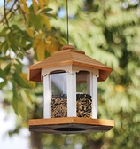 餵鳥器 Cornell大學鳥類實驗室喂鳥器鳥類學大本營庭院花園園林造景
