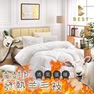 【Best寢飾】發熱科技羊毛被 雙人 2.5KG 100%舒棉布 舒適 透氣 棉被 被子 被胎 台灣製
