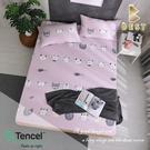【BEST寢飾】天絲床包三件組 雙人5x6.2尺 三文魚 100%頂級天絲 萊賽爾 附正天絲吊牌 床單