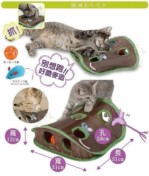 *WANG*【寵喵樂】2016年新款 超好玩 益趣鼠鼠坑洞球玩具