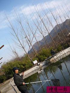 釣魚竿 碳素 4.5 超細