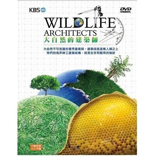 大自然的建築師 DVD (3片裝) (購潮8)