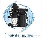 雙泵高壓洗車機刷車水槍便攜式車載洗車器12v泵家用220v空調清洗 nm3151 【Pink中大尺碼】
